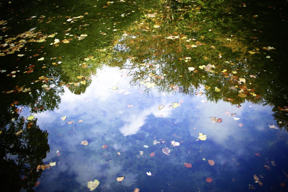 Wasser Spiegelung von Wolken und Wald / water reflexion of sky and forest